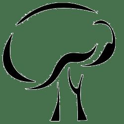 choobin-roopak